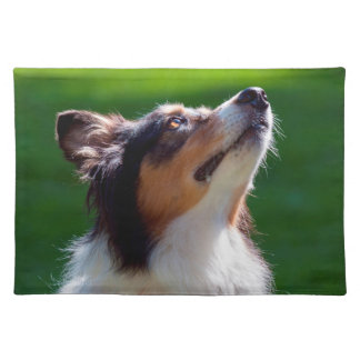 Australian Shepherd looking up Cloth Placemat