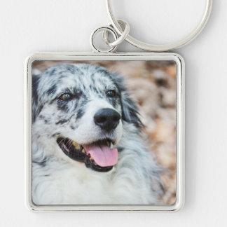 Australian Shepherd Modern Photo Keychain