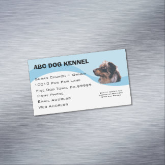 Australian Shepherd on Blue Swirl Business Card Magnet
