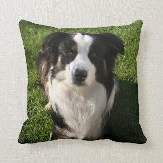 Australian Shepherd Photo Pillow