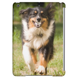 Case Savvy Glossy Finish iPad Air Case with Australian Shepherd Phone Cases design