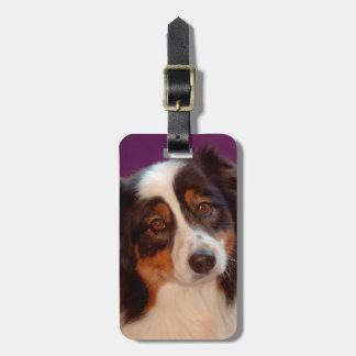 Australian Shepherd portrait Bag Tag
