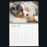 "Australian Shepherd Puppies Calendar<br><div class=""desc"">Here are some of my favorite puppies we&#39;ve raised at Pine Ridge Aussies. They are all loved so very much and in amazing homes!</div>"