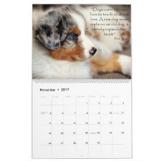 Australian Shepherd Puppies Calendar