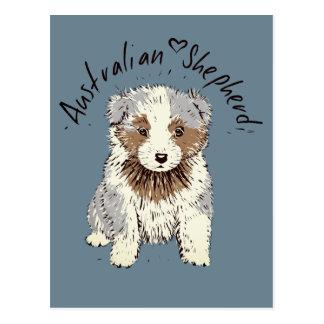 Australian Shepherd Puppy blue merle Postcard