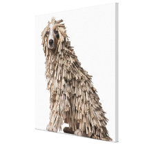 Australian Shepherd puppy full of Clothespin (5 Canvas Print