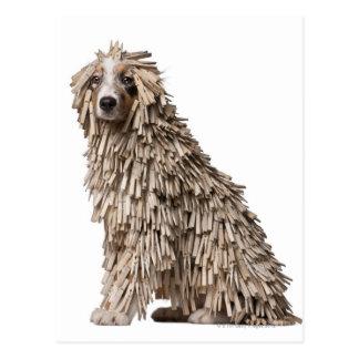 Australian Shepherd puppy full of Clothespin (5 Postcards