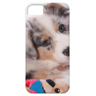 Australian shepherd puppy iPhone SE/5/5s case