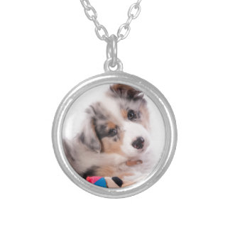 Australian shepherd puppy silver plated necklace