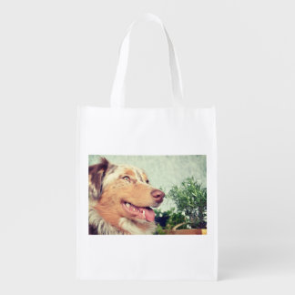 australian-shepherd-red merle.png reusable grocery bag