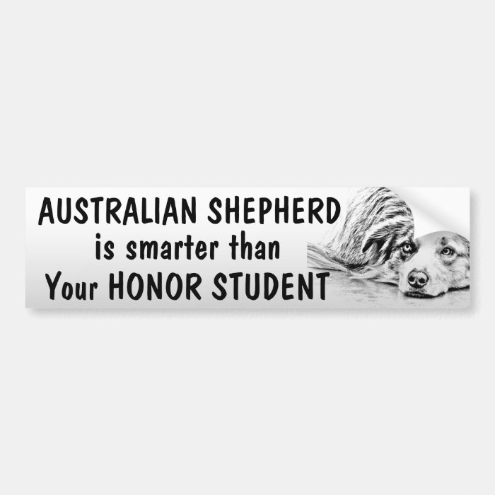 australian shepherd smarter than student funny bumper sticker zazzle. Black Bedroom Furniture Sets. Home Design Ideas
