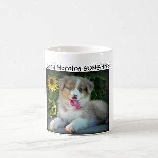 Australian Shepherd - SUNSHINE Mug