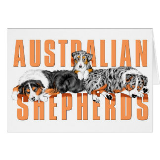Australian Shepherds Card