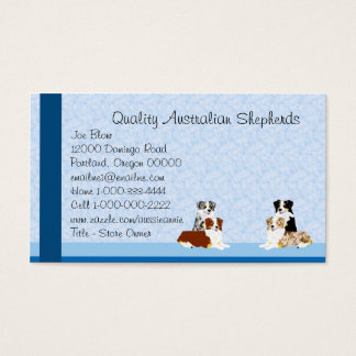 Australian Shepherds on Blue Custom Business Card