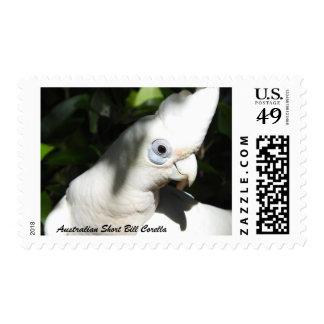 Australian Short Bill Corella 47c Stamp