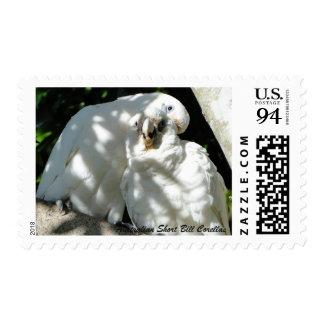 Australian Short Bill Corella 94c Stamp