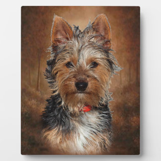 Australian Silky Terrier With Easel Plaque