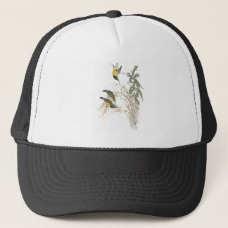 Australian Sun-bird Trucker Hat