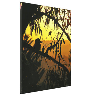 Australian Sunset Kookaburra Silhouette  Wrapped C Stretched Canvas Print