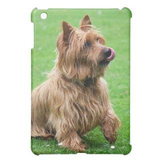 Australian Terrier dog ipad case, present idea iPad Mini Covers
