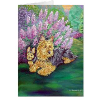 Australian Terrier Greeting Cards