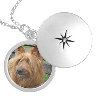 australian terrier on bench.png locket necklace