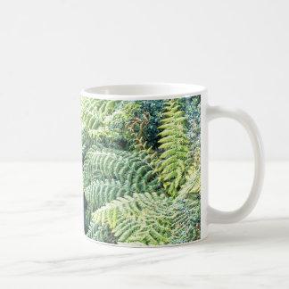Australian Tree Ferns Classic White Coffee Mug
