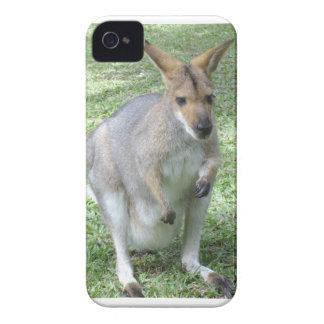 Australian Wallaby iPhone 4 Case