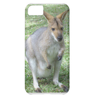 Australian Wallaby Case For iPhone 5C