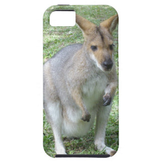 Australian Wallaby iPhone 5/5S Case