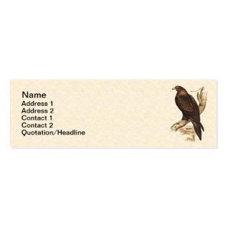 Australian Wedge Tailed Eagle. Huge Bird of Prey. Business Card