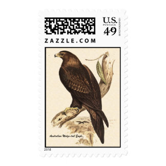 Australian Wedge Tailed Eagle. Huge Bird of Prey. Postage Stamp