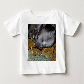 Australian Wombat Asleep In His Den Baby T-Shirt
