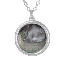 Australian_Wombat, Cat_Naps, Silver Plated Necklace