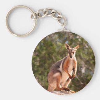 Australian yellow-footed rock wallaby keychain