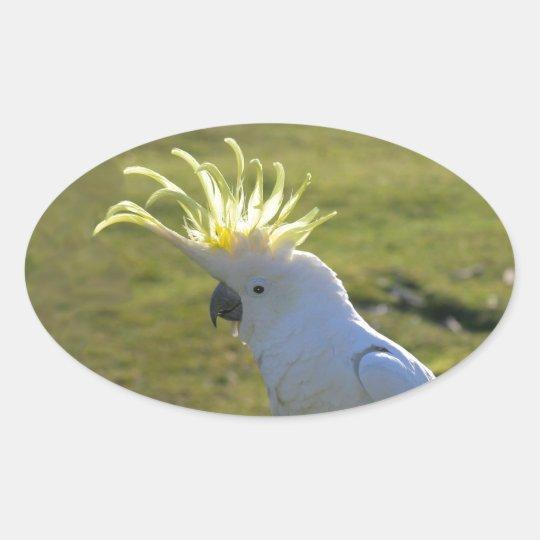 Australian Yellow Sulphur Crested Cockatoo Oval Sticker