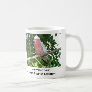 Australiano Galah Cockatoo color de rosa de Breas Tazas