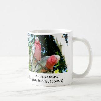 Australiano Galahs Cockatoo color de rosa de Brea Tazas De Café