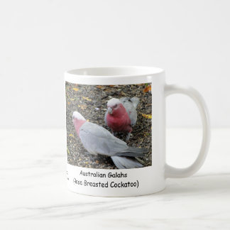 Australiano Galahs Cockatoo color de rosa de Brea Taza