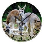 Australiano KangaROOS que se relaja en el Sun Relojes
