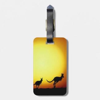 Australiano KangaROOS silueteado contra una puesta Etiquetas Para Maletas