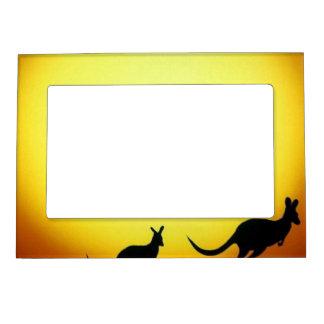 Australiano KangaROOS silueteado contra una puesta Marcos Magnéticos Para Fotos