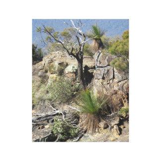 Australia's Blue Mountains Canvas Print