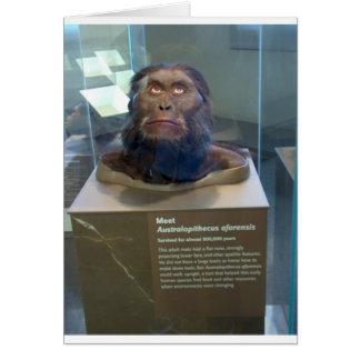 Australopithecus afarensis; museum exhibit. card