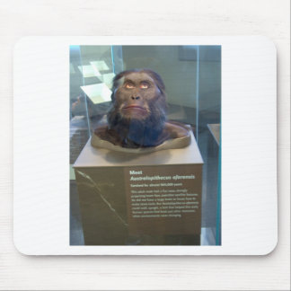 Australopithecus afarensis; museum exhibit. mouse pad