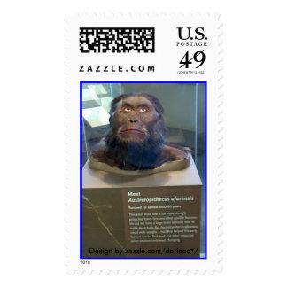 Australopithecus afarensis; museum exhibit. stamps