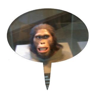 Australopithecus africanus; museum exhibit cake toppers
