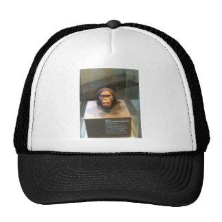 Australopithecus africanus; museum exhibit trucker hat