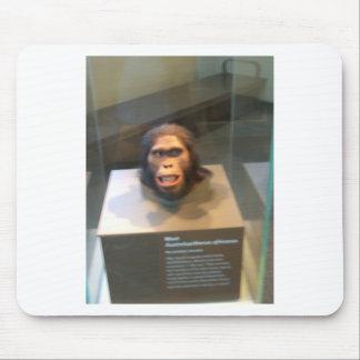 Australopithecus africanus; museum exhibit mouse pad