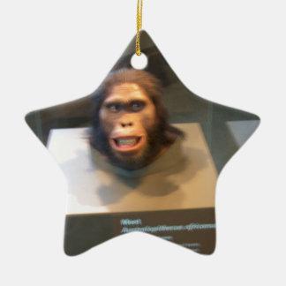 Australopithecus africanus; museum exhibit Double-Sided star ceramic christmas ornament